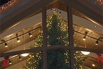 Festive Christmas decorations seen through the window of the Cumberland Mountain State Park's lodge