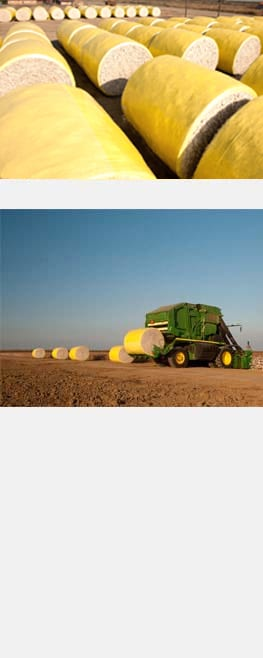 Bales of cotton and John Deere equipment with cotton bales in the field