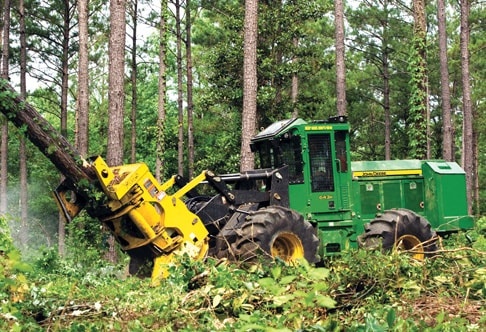 Side view of the 643K Wheeled Feller Buncher sawing into a tree in the forest