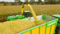 John Deere Forage Harvester using spout to dump grain into a trailer