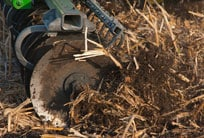 Close-up of tillage disks in the soil