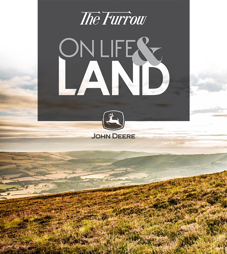 Cover image of The Furrow magazine.