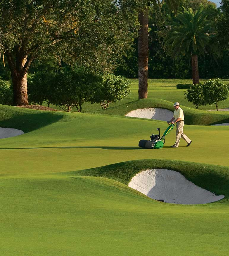 Man grooming golf course turf with sand traps and palm trees in background.