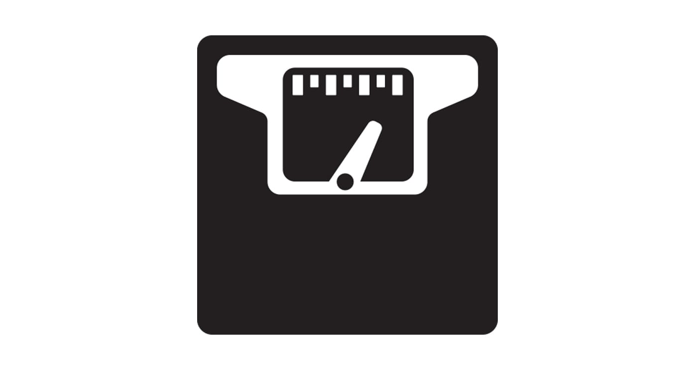payload weighing scale icon