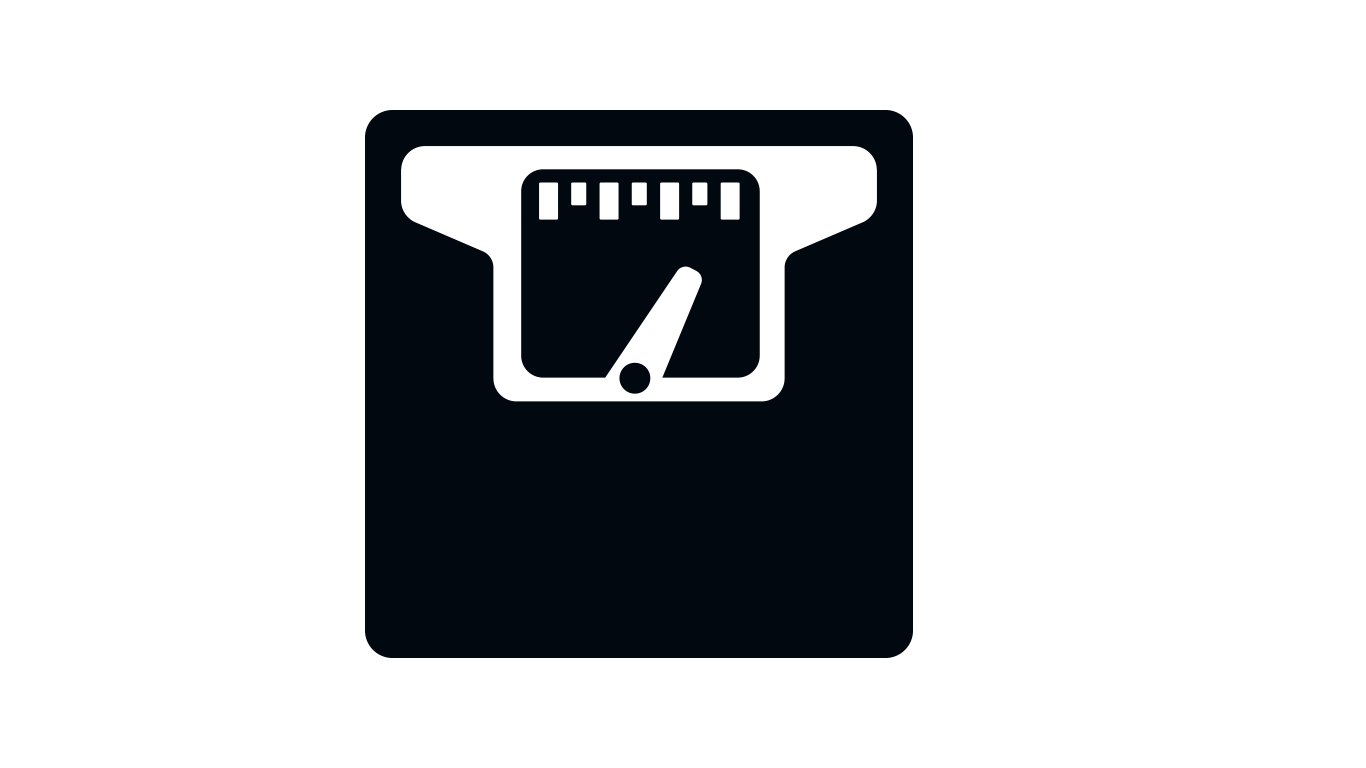 pay load weighing scale icon