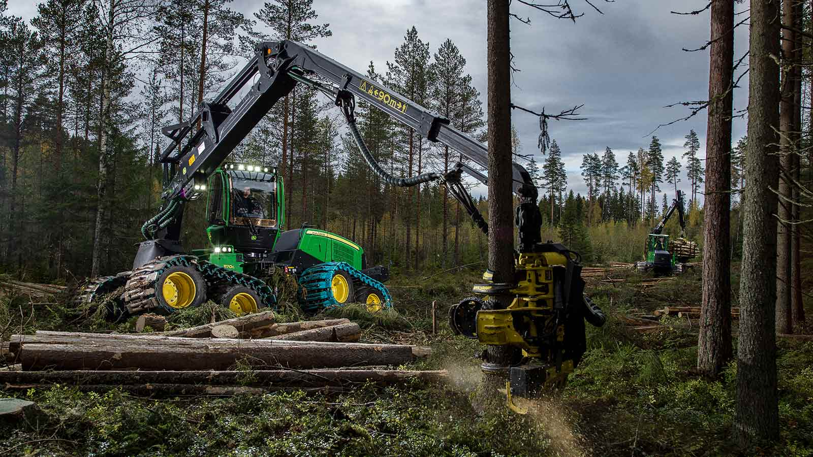 John Deere 1170G 8W Wheeled Harvester cutting down trees in the forest.
