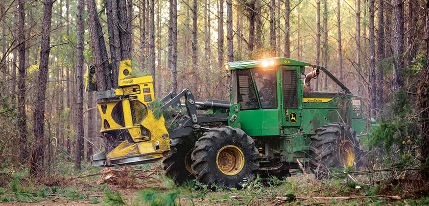 634L-II Wheeled Feller Buncher works in the woods with several trees already cut in the felling head