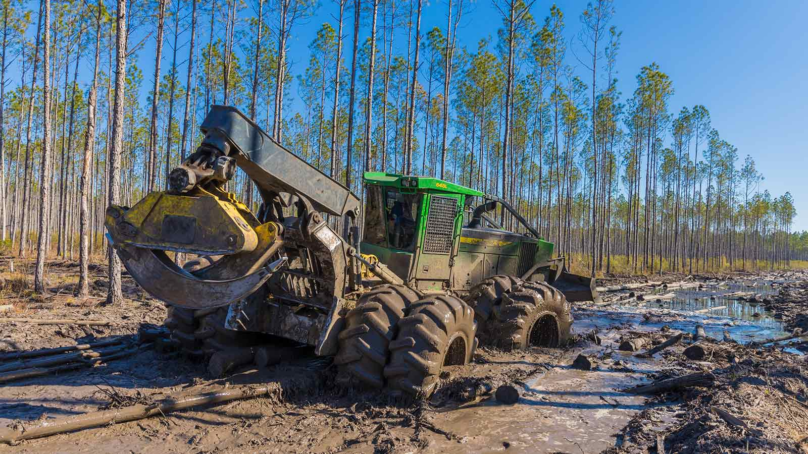 A John Deere 648L Skidder drives through a swampy landscape in the forest.