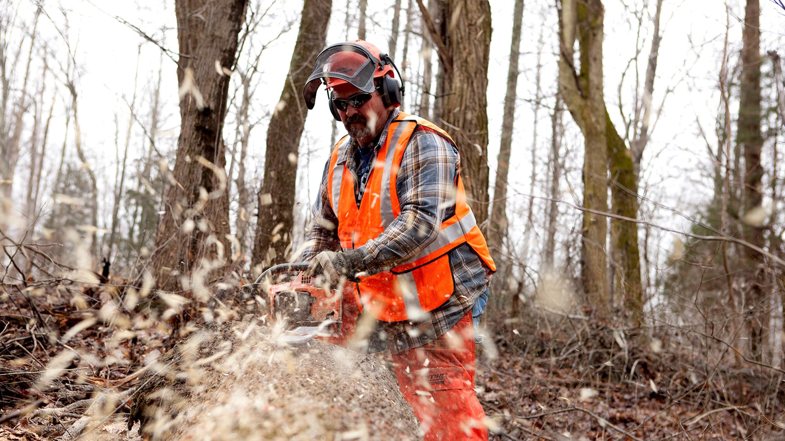 Danny Richards uses a chainsaw to cut through a log