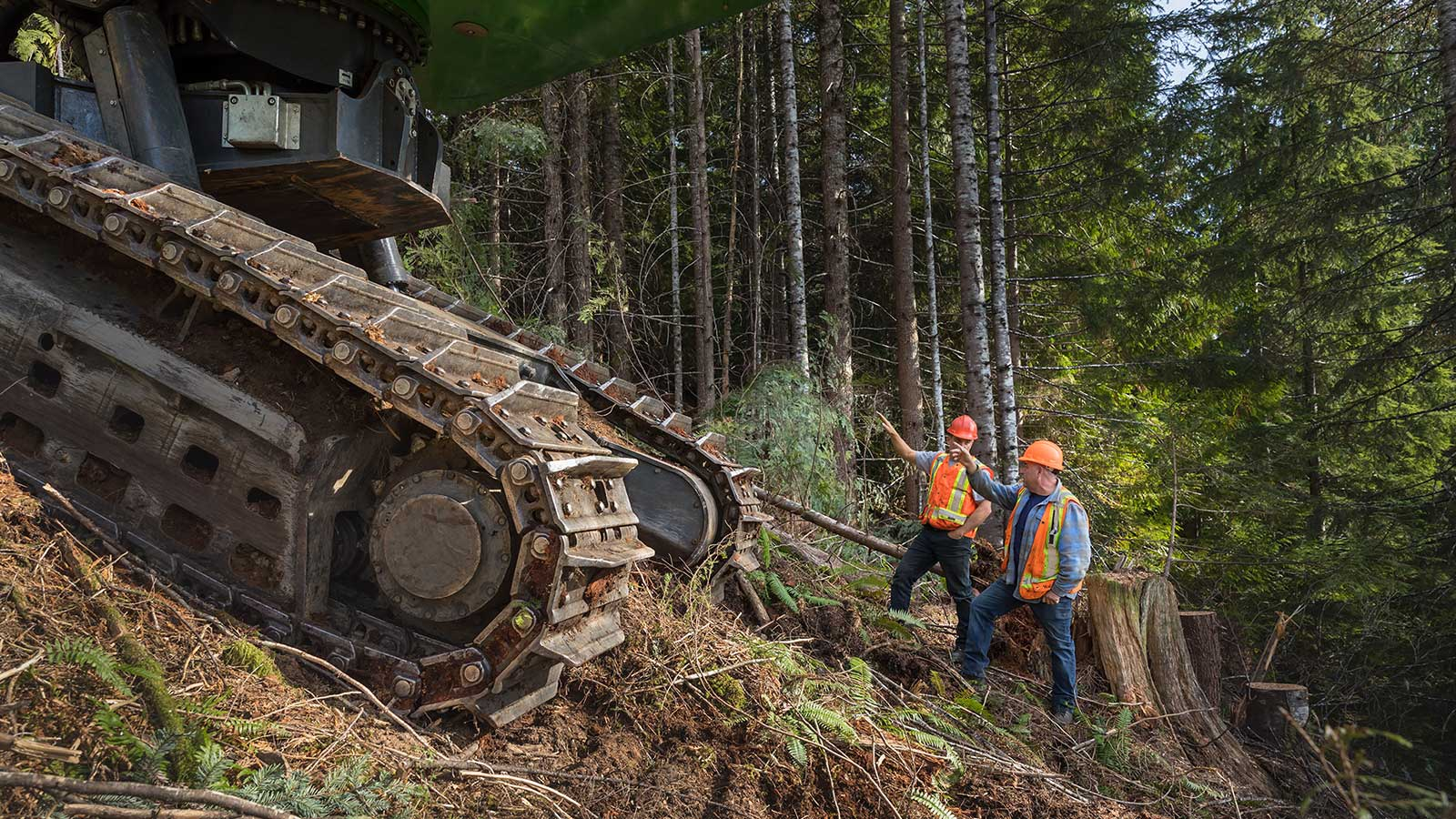 Steep-slope logging on Vancouver Island
