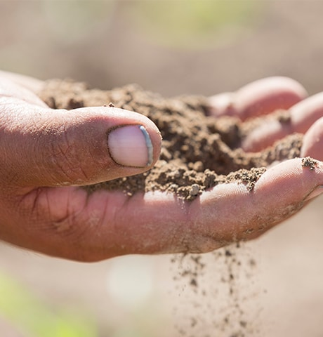 Close up of farmer's hand holding dirt
