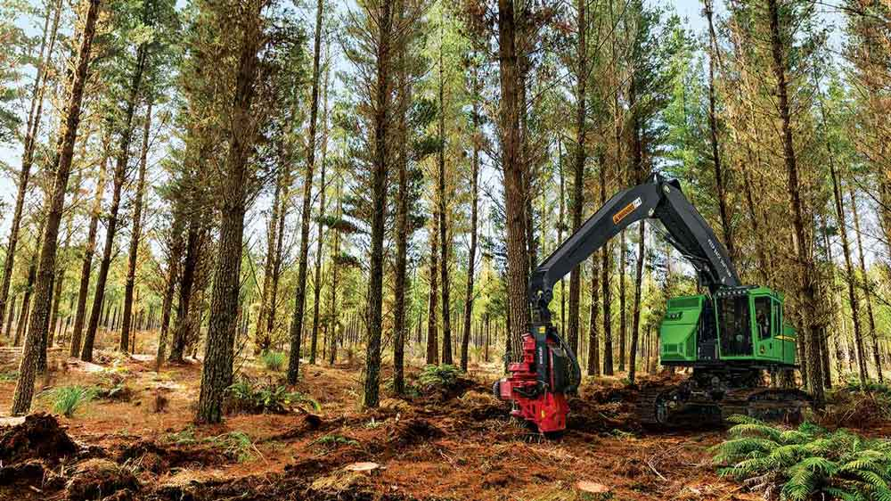 A tracked harvester cutting down a tree