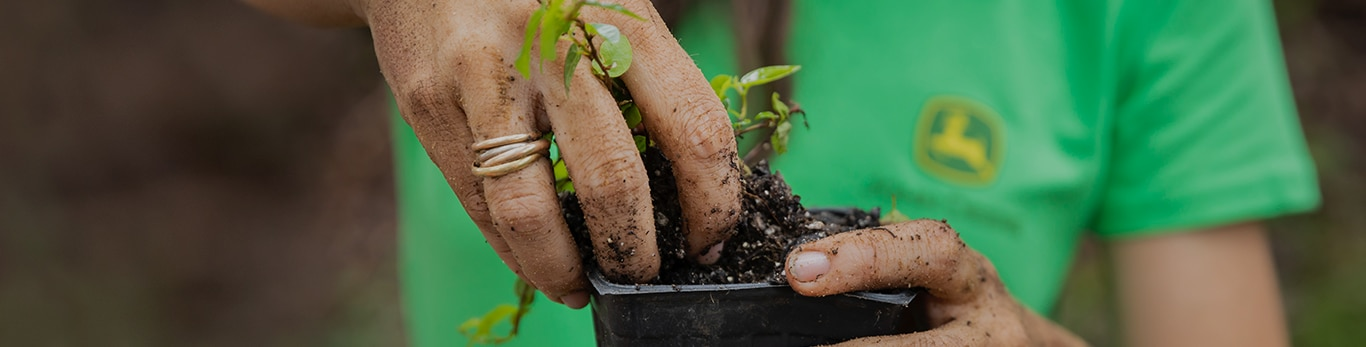 A close up image of a woman's hands holding a pumpkin seedling that is ready to be planted.