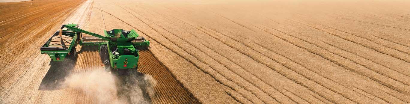 Combine pouring grain in the field