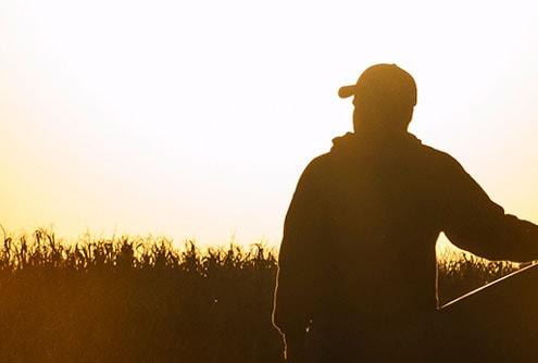 Explore Grain Harvesting Parts
