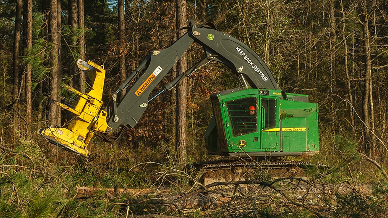 Feller Buncher 803M working in the forest