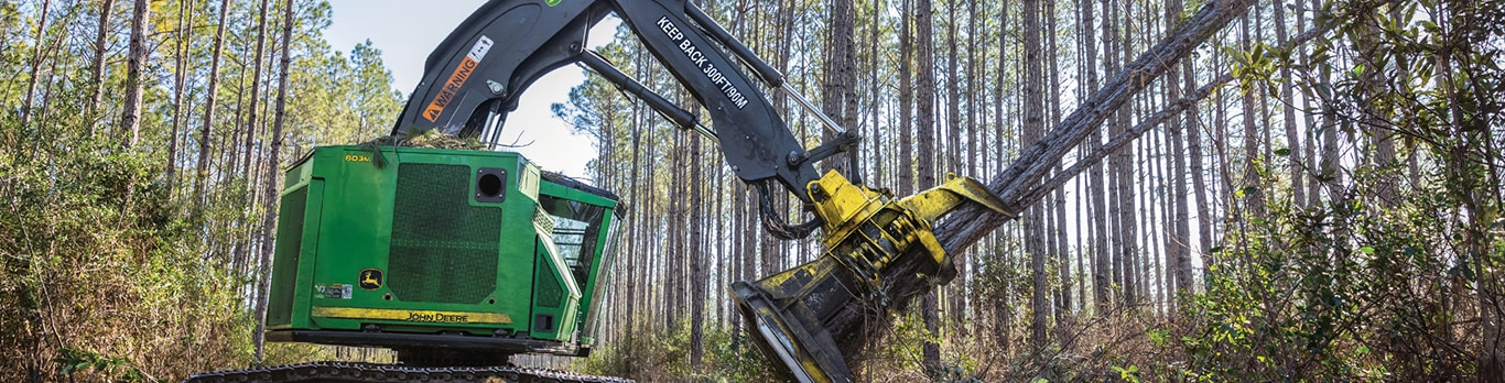 John Deere 803M Tracked Feller Buncher felling a group of trees