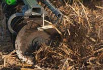 Versatility for varying tillage needs