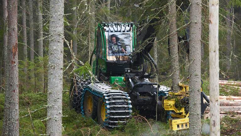 John Deere 1470G wheeled harvester standing between the trees on a late thinning.