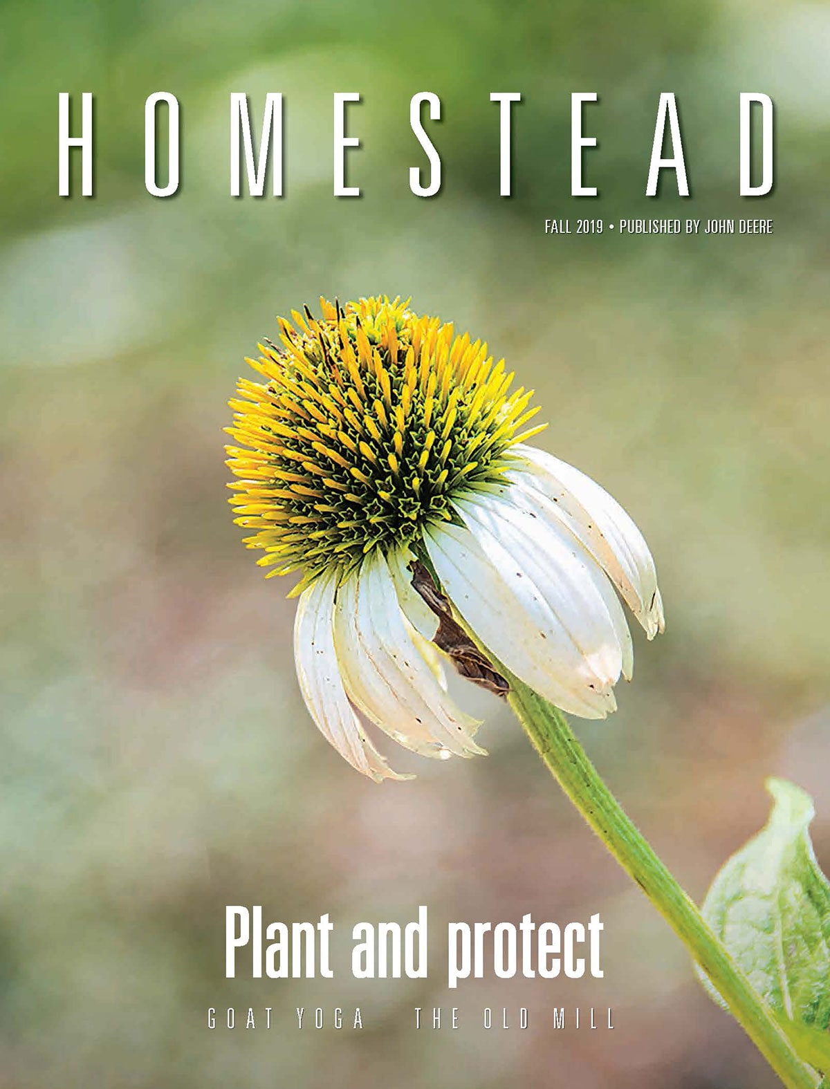 Homestead - Fall 2019 Issue