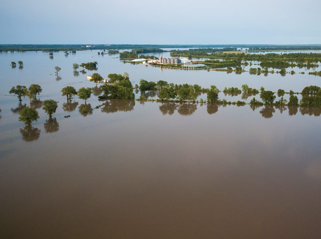 Flood image covering trees
