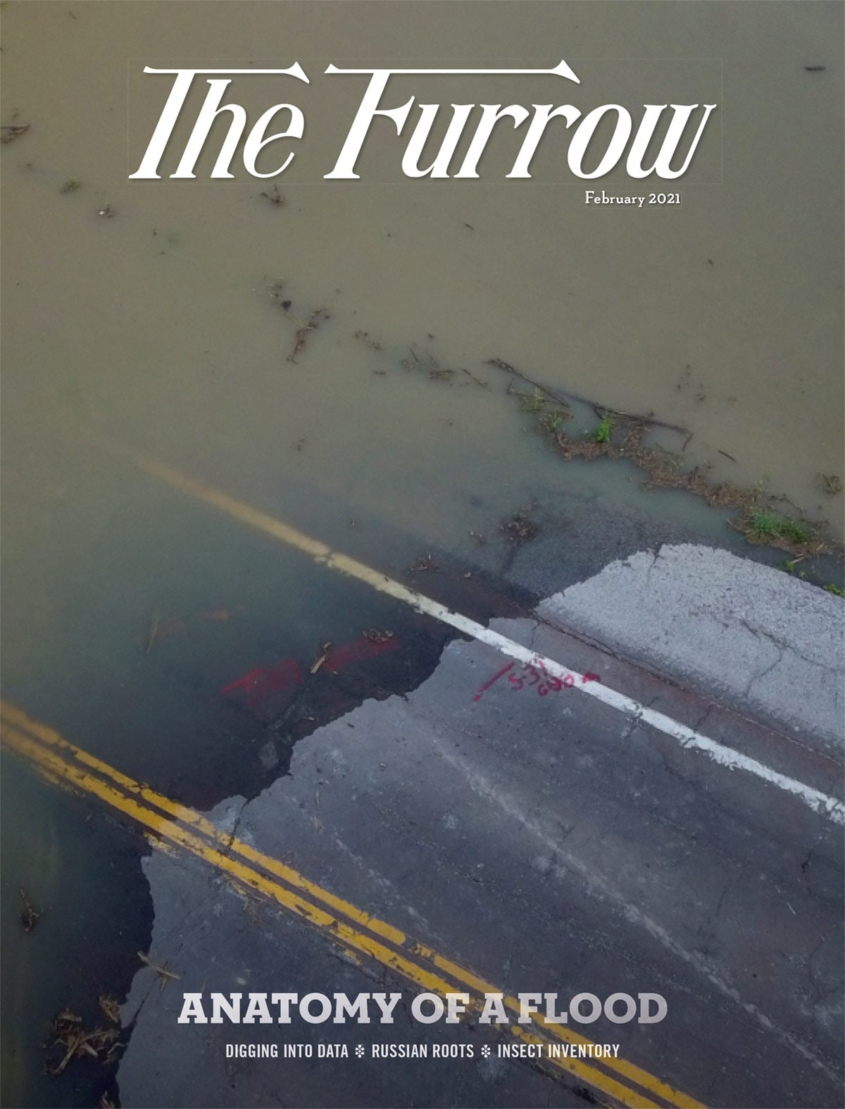 The Furrow February 2021