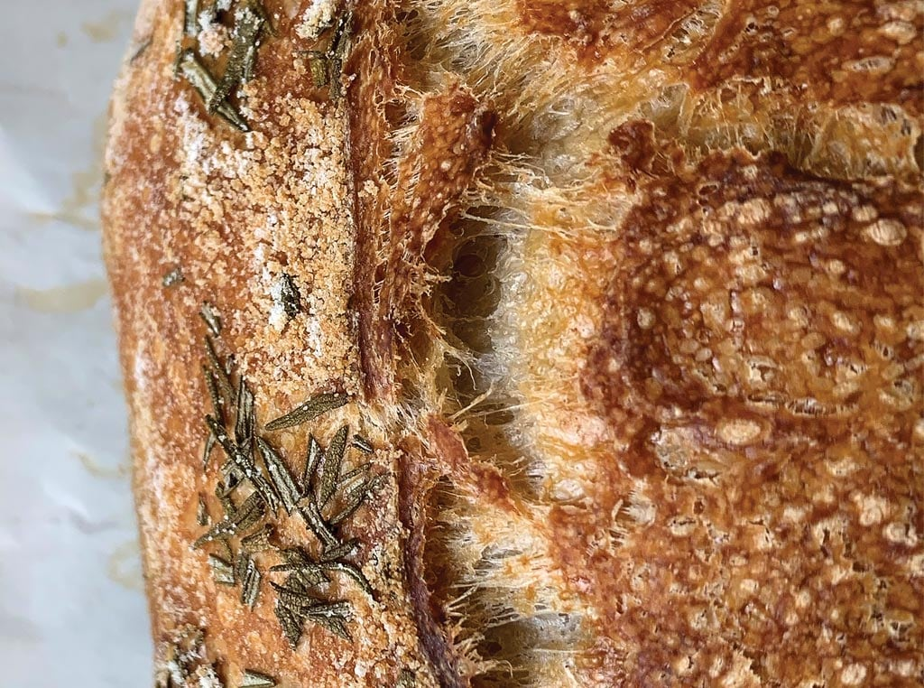Sourdough Bread close up