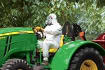 Man in protective gear driving a 5100ML Low-Profile Utility Tractor in an orchard