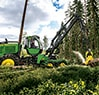 Ground level view of the 1270G Wheeled Harvester cutting into a log at a job site